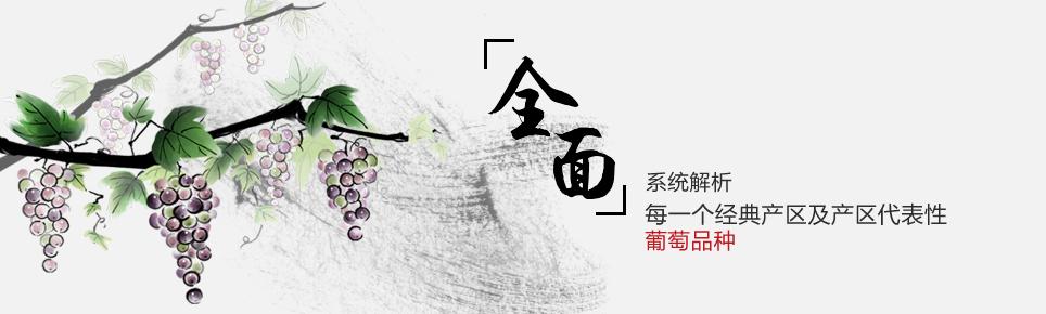 中国葡萄酒产区课程